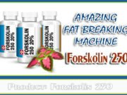 Forskolin 250 Review