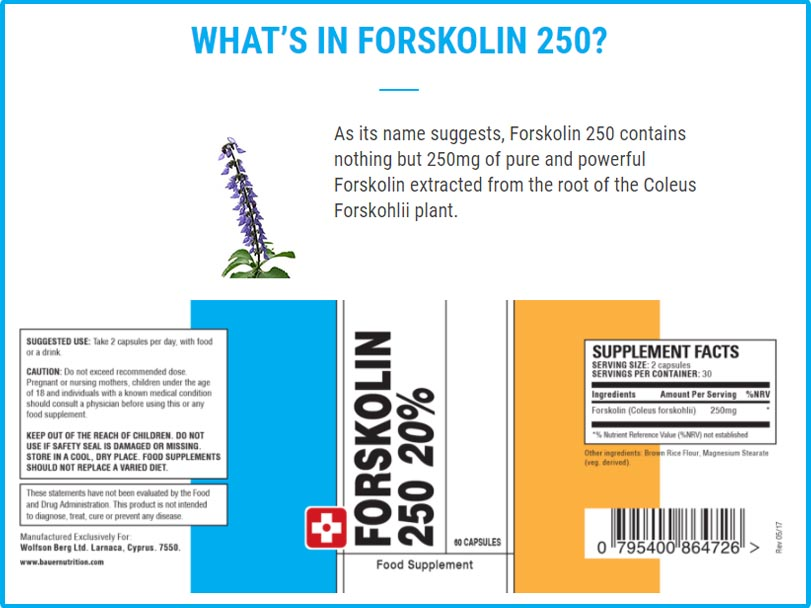 Forskolin 250 Ingredent