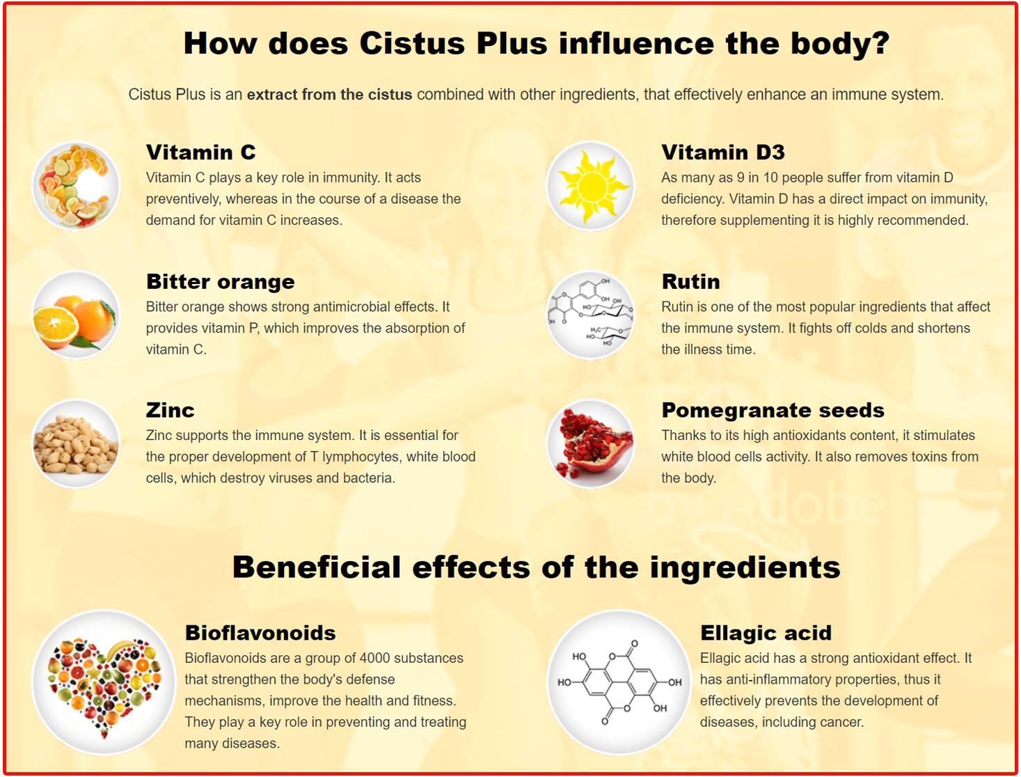 How Does Cistus Plus Work