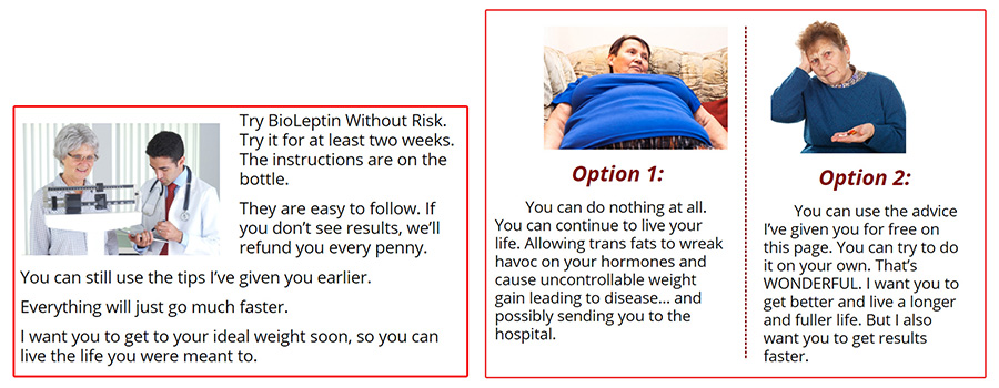 How Does BioLeptin Work