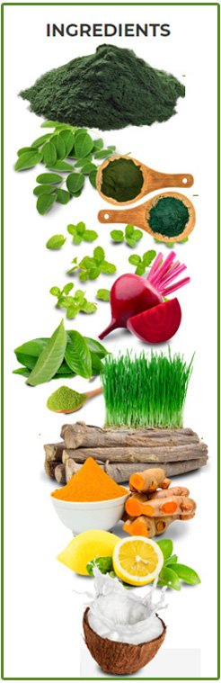 Organifi Green Juice Ingredients