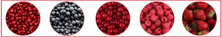 Organifi Red Juice ingredient