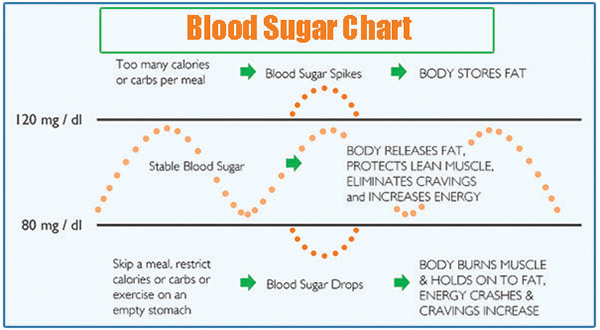 Blood Sugar Stabilizer Report
