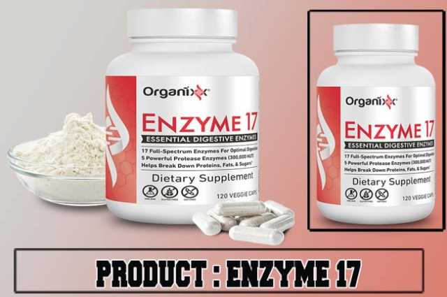 ENZYME 17 Review