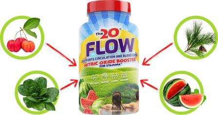 The 20 Flow ingredients