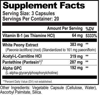 Acetylcholine Brain Food Ingredients
