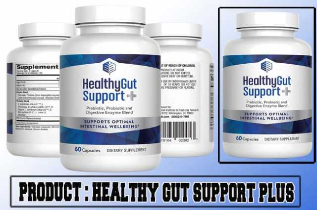 Healthy Gut Support Plus Review