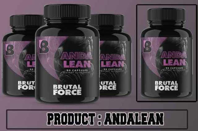 Andalean Review