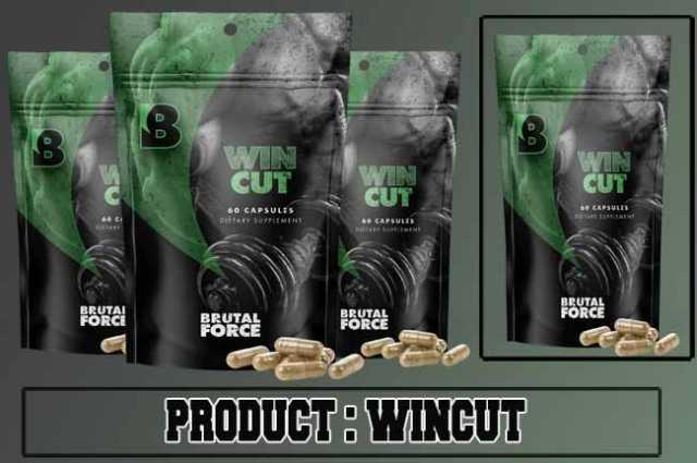 Wincut Review
